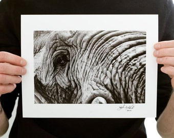 Elephant Close Up Photograph (9 x 6 inch Fine Art Print) Black & White Animal Photograph