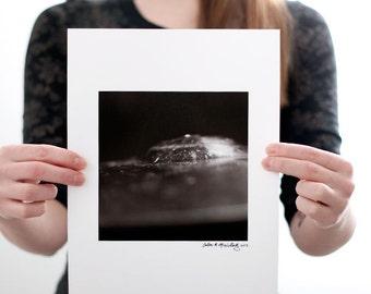 Cymbal I Photograph (6 x 6 inch Fine Art Print) Black & White Music Photography