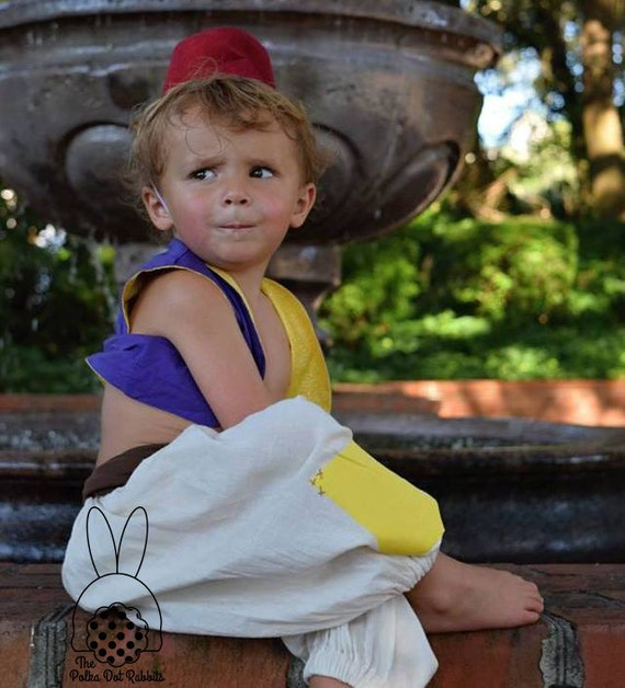 Aladdin Halloween Costume Harem Pant Purple lined Vest and  fff49731876