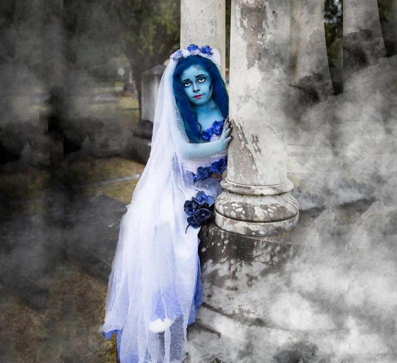 Corpse Bride Halloween Costume Diy.Emily The Corpse Bride Costume Corset Top Skirt With Train Veil Bouquet And Skeleton Tights