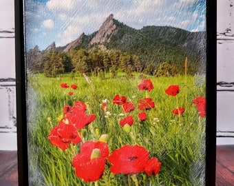 Boulder Colorado, En-caustic Photography Art, Summer Poppies, Orange, Poppies,  Holiday Gifts, Framed, Home Decor, Wall Decor, Ready To Ship