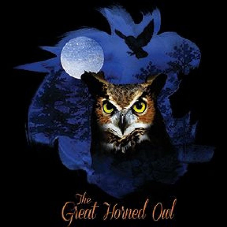 V Neck Top Womens Short Sleeve Birds of Prey Great Horned Owl 20893