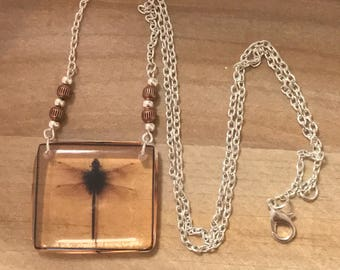 Dragonfly in amber - Dragonfly Pendant - Outlander Inspired-Outlander Jewelry- silver necklace - copper beads -Silver Chain
