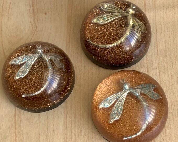 Dragonfly in Amber-Dragonfly Paperweight- Resin Paperweight-Outlander Inspired-calligraphy - paperweight