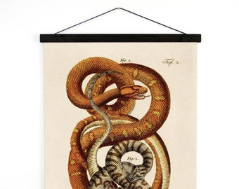 Pull Down Chart - Vintage French Zoology Canvas Hanging Print - Illustrated Snakes by LaCépède - Educational Chart Poster Reptiles - A027CV