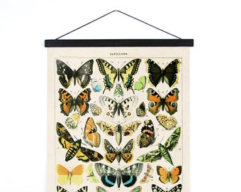 Pull Down Chart - Butterfly French Papillons Vintage Handmade Reproduction Canvas Print. Le Petit Larousse insects moth butterflies - A003CV