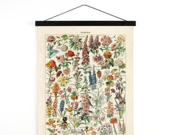 Vintage French Garden Flower Canvas Hanging Chart. Fleurs - Le Petit Larousse by Millot. Educational Chart Diagram - B031CV