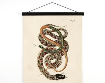 Pull Down Chart - Vintage French Zoology Canvas Hanging Print 2 - Illustrated Snakes by LaCépède - Educational Chart Poster Reptiles