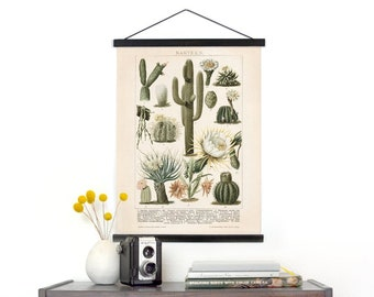Vintage Cactus Illustration Pull Down Chart - Canvas Palm Springs Diagram Print. Kakteen Botanical Desert Educational Wall Hanging - C001CV