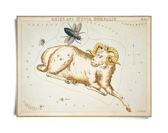 Vintage Aries Zodiac Astrology Sign Print from Urania's Mirror Star Atlas