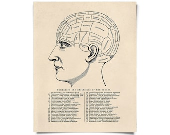 Vintage Phrenology Print. The Brain, Psychology, Science Educational Diagram Human body Biology Print - AT015P