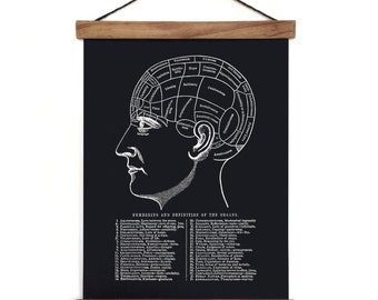 Pull Down Chart - Phrenology Reproduction Canvas Print. Anatomy Science Educational Diagram Human body Biology mystics gypsy - M004CV
