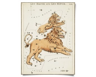 Vintage Leo Zodiac Astrology Sign Print from Urania's Mirror Star Atlas