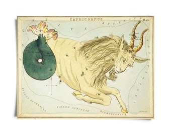 Vintage Capricorn Zodiac Astrology Sign Print from Urania's Mirror Star Atlas