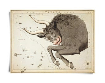 Vintage Taurus Zodiac Astrology Sign Print from Urania's Mirror Star Atlas
