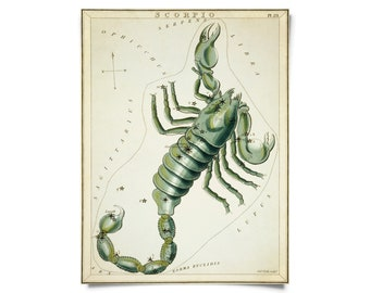 Vintage Scorpio Zodiac Astrology Sign Print from Urania's Mirror Star Atlas