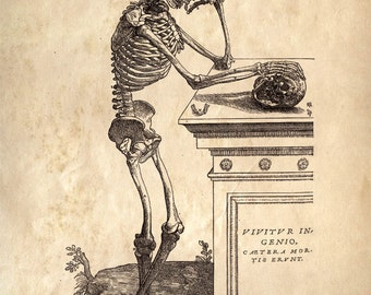 Vintage Anatomy Leaning Skeleton Print. Chart of the Human Body by Andreas Vesalius - Educational Biology Diagram Chart - AT008P