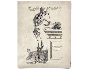 Anatomy Skeleton Print. Vintage Illustration Reproduction. Human Body. Bones. Andreas Vesalius Educational Biology Diagram - AT008P