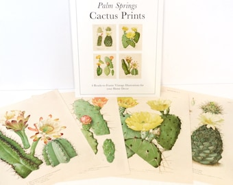 Vintage Palm Springs Cactus Print Set. Botanical Cacti blossom Set of 4. Chart Diagram Cactus Desert Poster Pull Down Chart - SET001