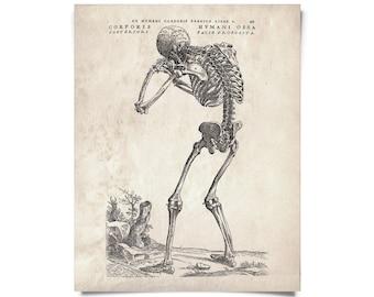 Vintage Anatomy Skeleton Back Print
