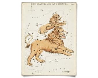 Vintage Leo Zodiac Astrology Sign Print from Urania's Mirror Star Atlas
