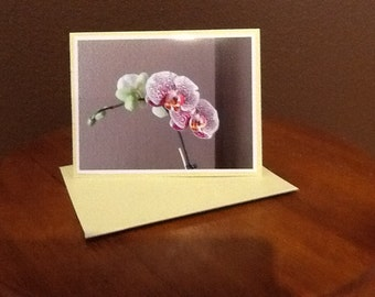 Janelle's Blooming Orchid cards   set of 4 cards with envelopes
