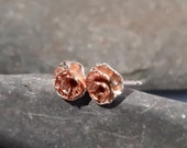 Copper Rose and Silver St...