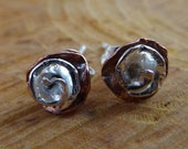 Silver Rose and Copper St...