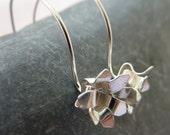 Chrysanthemum flower drop...