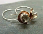 Silver Rose and Copper fl...