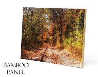 Bamboo Wall Art-Wood Panel Art-Railroad Tracks Photograph-20x30-Photo Mounted on Wood-Fine Art Photography-Woodland Wall Decor-Autumn Art