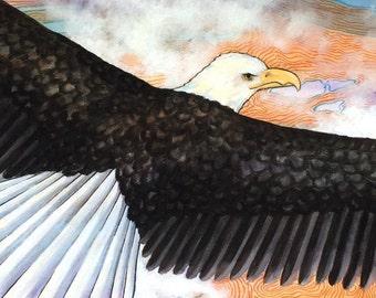 Eagle Original Artwork, Set of Two Bald Eagles, Original Mixed Media Illustration