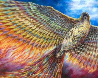 Red Tailed Hawk Turned Phoenix, Rainbow Phoenix, Rebirth and Renewal Symbol