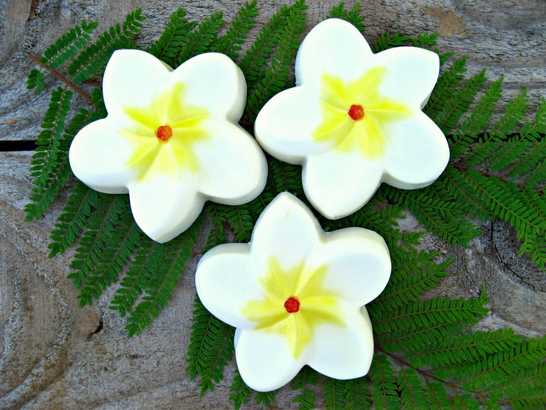 PLUMERIA SOAP. Gift from Hawaii. Wedding Bridal Party Favor image 0