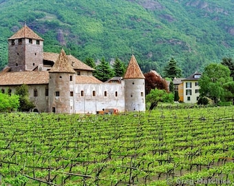 """Fine Art Color Landscape Photography of Vineyard and Castle in Italy - """"Castello Mareccio and Vineyard"""""""