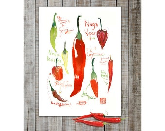Red hot chili pepper poster, Watercolor art, Red kitchen decor, Vegetable painting, Chili pepper print, Food art, Kitchen wall art, Habanero