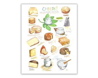 Cheese poster, French food illustration print, Kitchen decor, France lover gift, Camembert painting, Foodie wall art