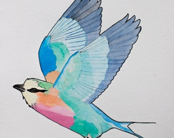 Lilac-breasted Roller - bird, print, watercolour, art