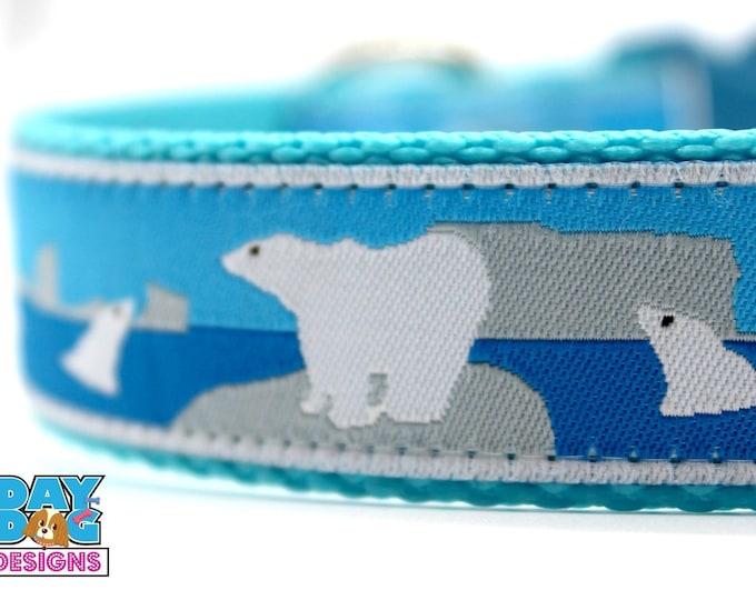Polar Bears and Seals, 1 inch width, Big Dog Collar, Adjustable Pet Collar, Winter Collar, Arctic Dog Collar