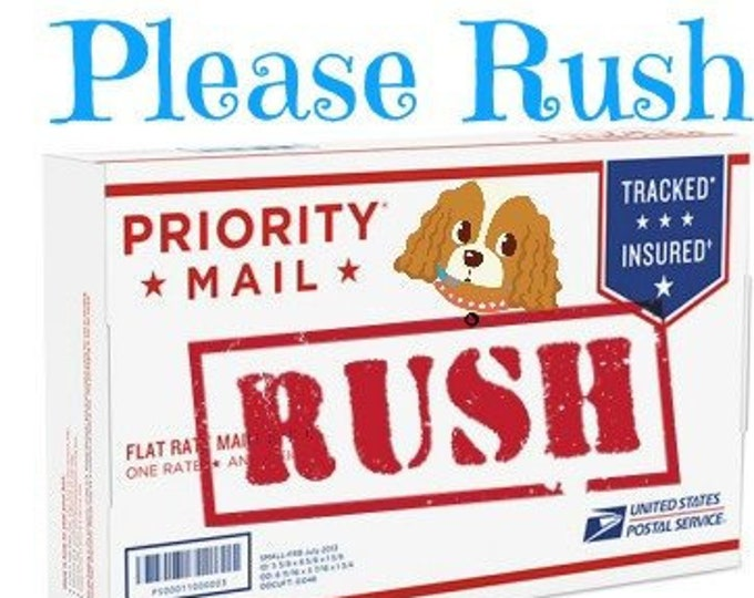 Rush Order Shipping Upgrade, Priority Shipping, Quick Shipping, Dog Collar, Cat Collar