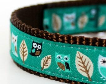 Owl Dog Collar in Teal Green, Hootie Owl Pet Collar, Adjustable Ribbon Dog Collar, Forest Dog Collar