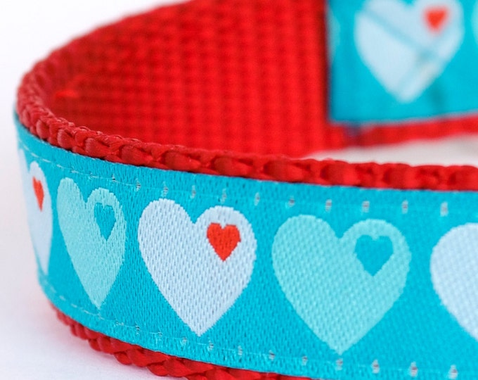 Love Hearts Dog Collar, Aqua Blue Pet Collar, Valentine