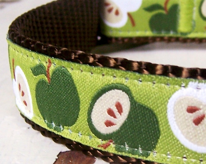 Apple a Day Dog Collar, Green Apple Dog Collar, Teacher Dog Collar
