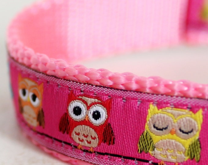 QUICK SHIP Pink Colorful Owls Dog Collar / Pet Accessories / girl dog collar / woodland dog collar