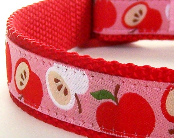 Red Apple Adjustable Fall Dog Collar Teacher Dog Collar