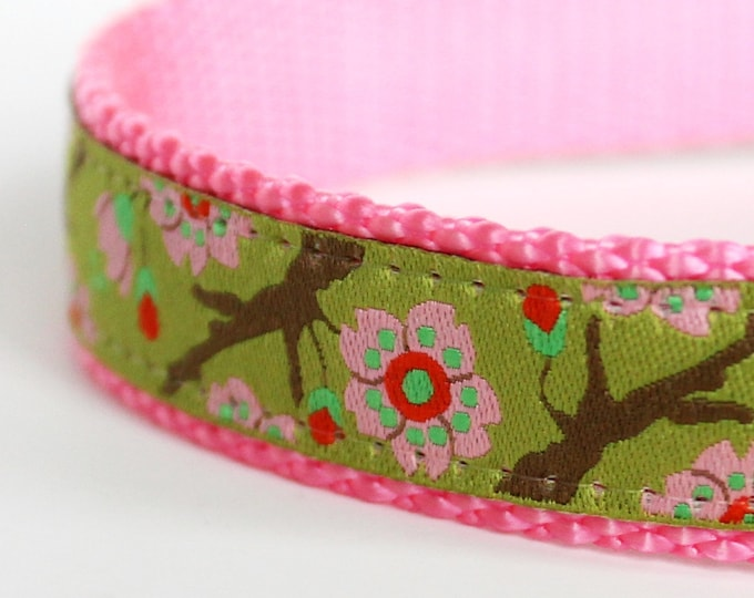 Cherry Blossoms Lime Green  Dog Collar / Adjustable Flower Dog Collar / Japanese dog collar
