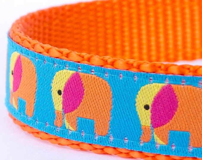 QUICK SHIP Elephant Dog Collar, Orange Pet Collar, Animal Print, Jungle Dog Collar
