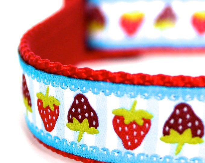 Red Strawberry Dog Collar, Adjustable Dog Collar, European Ribbon