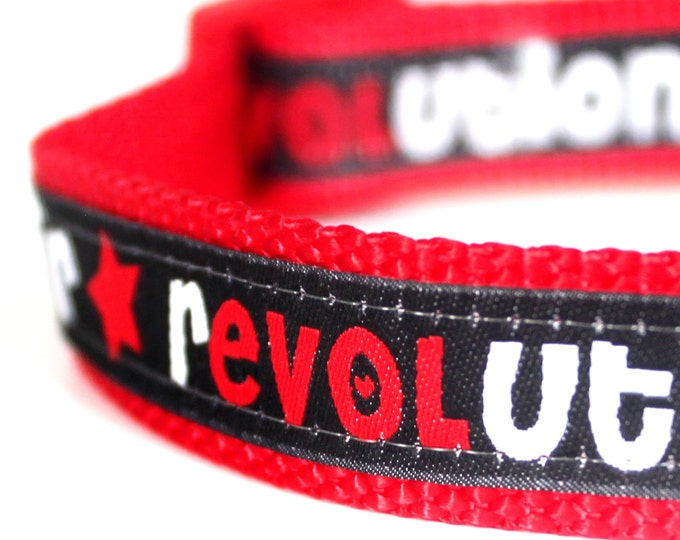 Love is in the Air Dog Collar / Ribbon Dog Collar / Hipster / Black and Red Collar