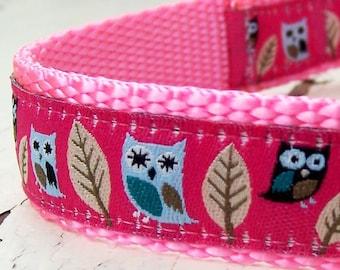Pink Owls Dog Collar, Hootie, Adjustable Pet Collar, Ribbon Collar